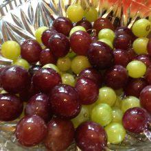160806_grapes